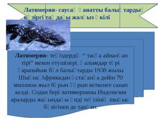 """Латимерия- теңіздердің """" тасқа айналған тірі"""" мекен етушілері. Ғалымдар түрі"""