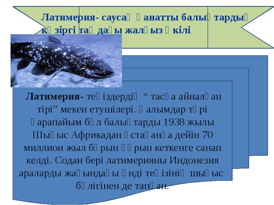 """Латимерия- теңіздердің """" тасқа айналған тірі"""" мекен етушілері. Ғалымдар түрі..."""