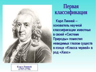 Карл Линней (1707-1778) Карл Линней – основатель научной классификации животн