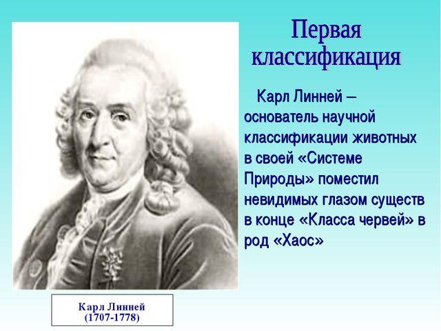 Карл Линней (1707-1778) Карл Линней – основатель научной классификации животн...