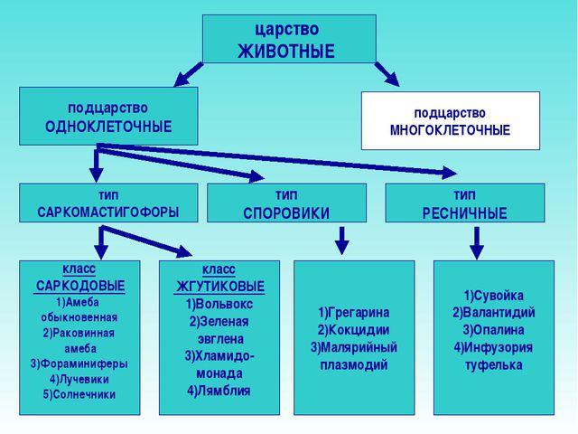 Биологии 7 одноклеточные гдз 4 класс подцарство по часть