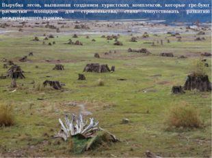Вырубка лесов, вызванная созданием туристских комплексов, которые требуют р