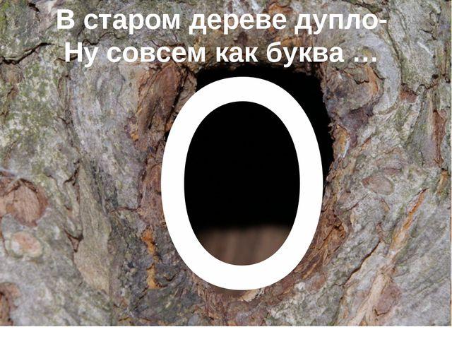 О В старом дереве дупло- Ну совсем как буква …