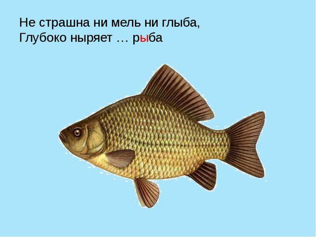 Не страшна ни мель ни глыба, Глубоко ныряет … рыба
