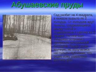 Абушаевские пруды Сад разбит на 4 квадрата, в каждом вырыто по 2 колодца. От