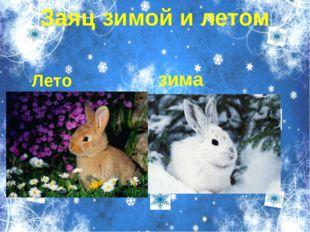 Пункт 1 Пункт 2 Пукт 3 Вложенный пункт 1 Вложенный пут 2 Заяц зимой и летом