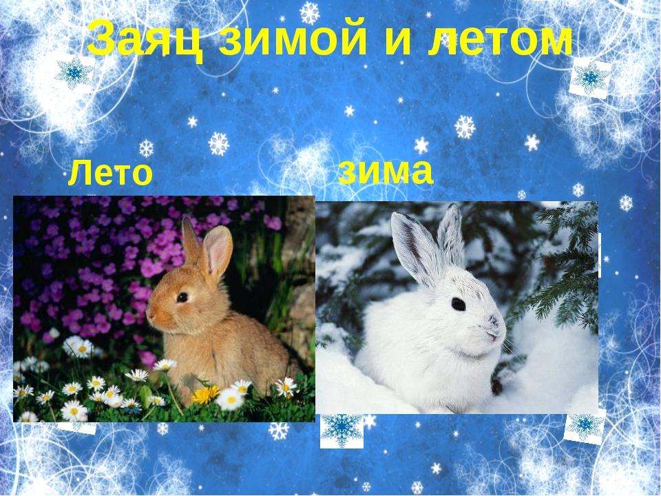 Пункт 1 Пункт 2 Пукт 3 Вложенный пункт 1 Вложенный пут 2 Заяц зимой и летом...