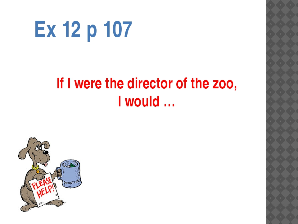 Ex 12 p 107 If I were the director of the zoo, I would …