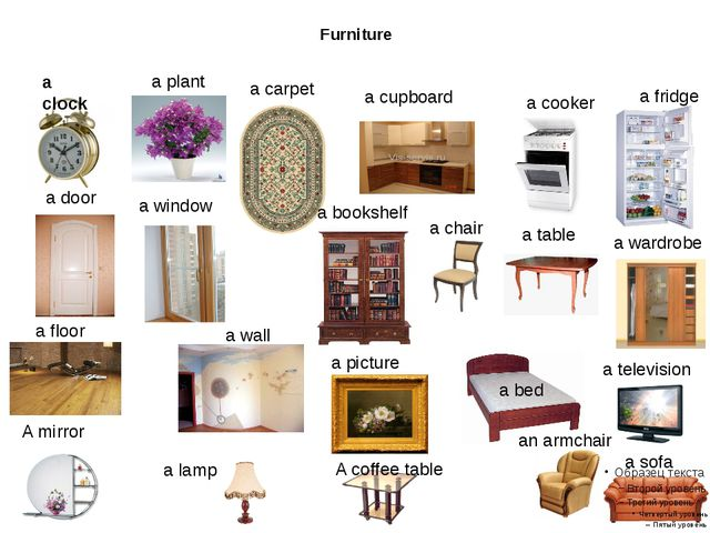Furniture a clock a plant a carpet a cupboard a cooker a fridge a door a win...