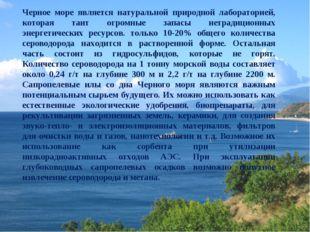 Черное море является натуральной природной лабораторией, которая таит огромны