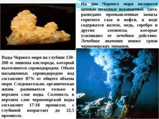 На дне Черного моря являются ценные полезные ископаемые. Здесь разведано пром