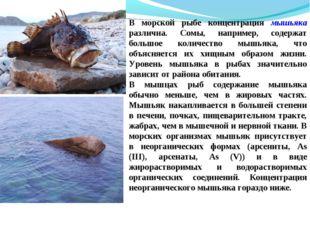 В морской рыбе концентрация мышьяка различна. Сомы, например, содержат большо