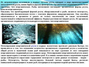 Из антропогенных источников в водные системы ртуть попадает в виде преимущест