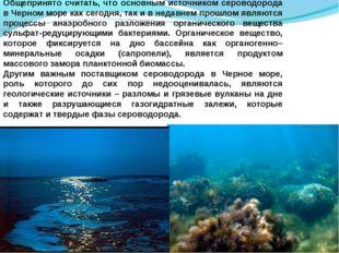 Общепринято считать, что основным источником сероводорода в Черном море как с