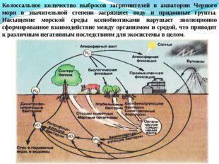 Колоссальное количество выбросов загрязнителей в акватории Черного моря в зна