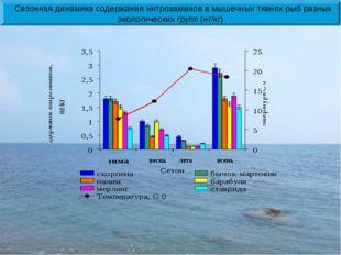весна лето осень Сезонная динамика содержания нитрозаминов в мышечных тканях