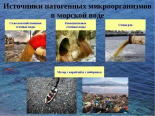 Сельскохозяйственные сточные воды Коммунальные сточные воды Стоки рек Мусор с