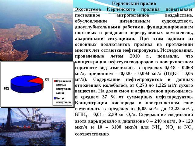 Керченский пролив Экосистема Керченского пролива испытывает постоянное антроп...