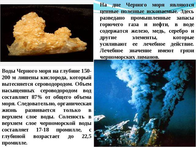 На дне Черного моря являются ценные полезные ископаемые. Здесь разведано пром...