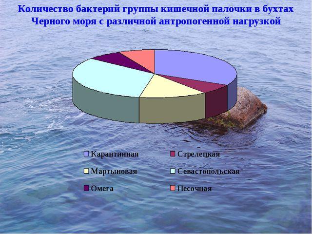 Количество бактерий группы кишечной палочки в бухтах Черного моря с различной...