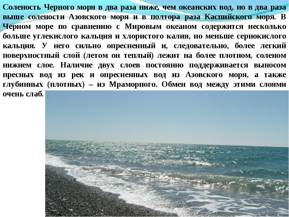 Соленость Черного моря в два раза ниже, чем океанских вод, но в два раза выше...