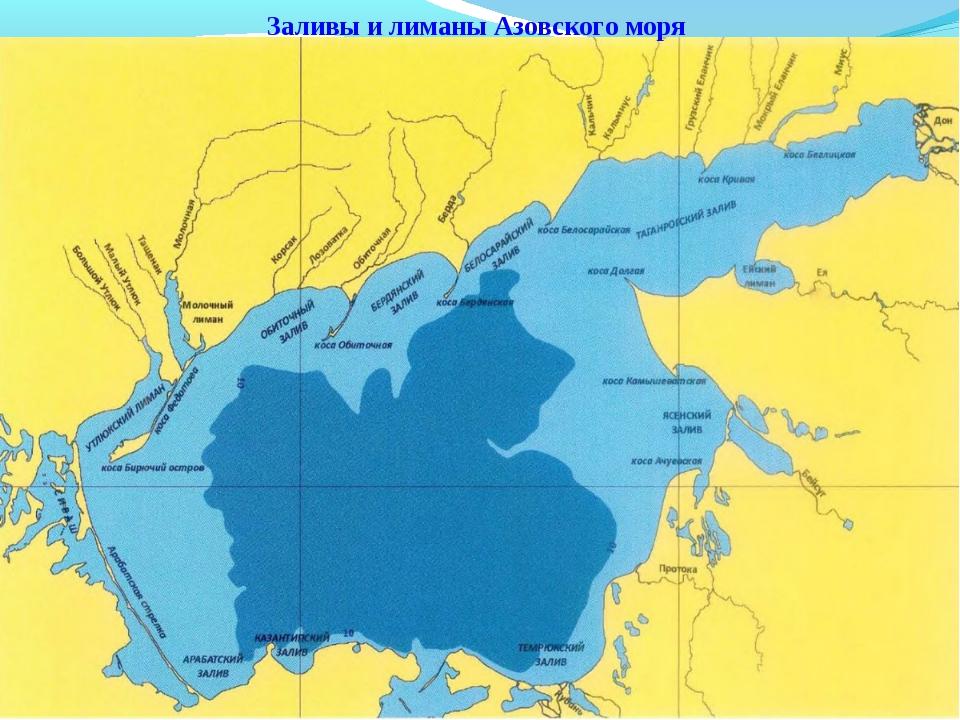 Заливы и лиманы Азовского моря