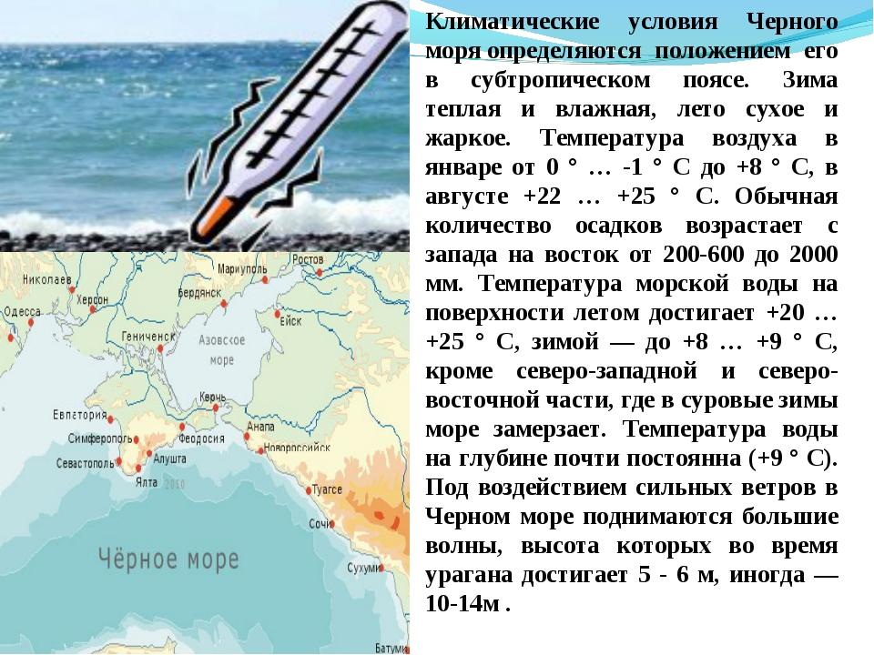 Климатические условия Черного моряопределяются положением его в субтропическ...