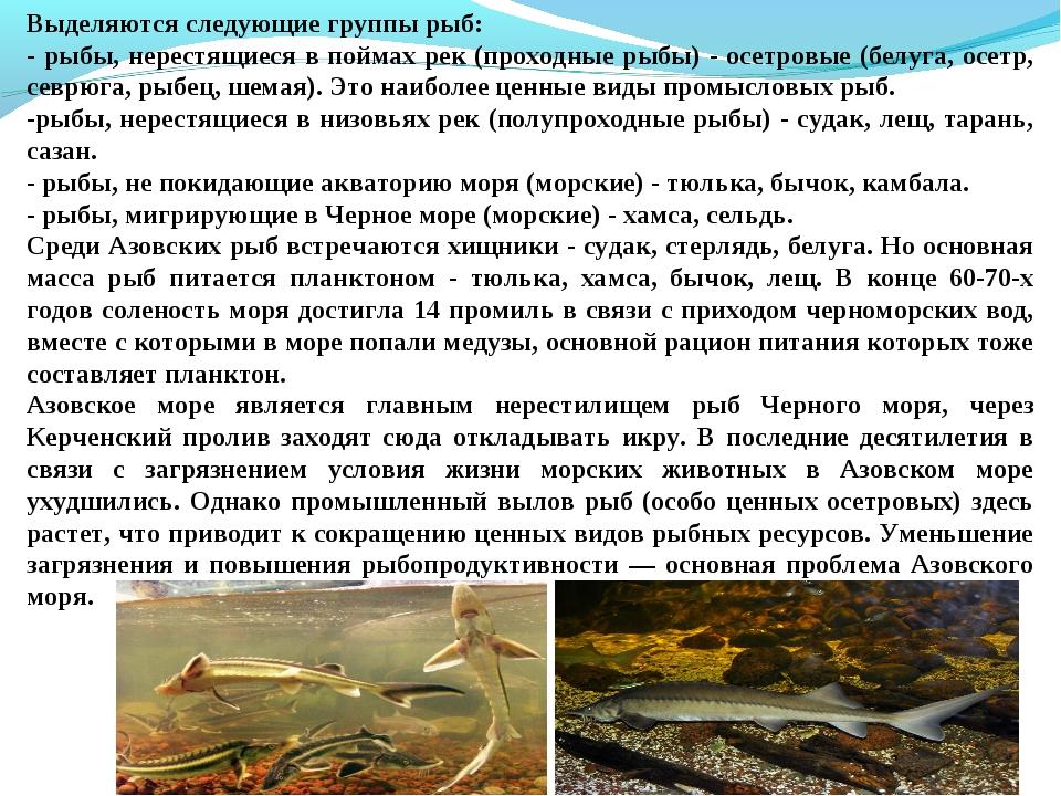 Выделяются следующие группы рыб: - рыбы, нерестящиеся в поймах рек (проходные...