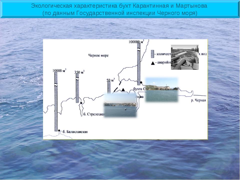 Экологическая характеристика бухт Карантинная и Мартынова (по данным Государс...