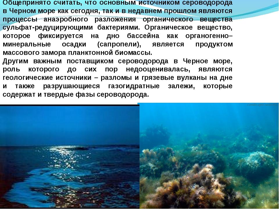 Общепринято считать, что основным источником сероводорода в Черном море как с...