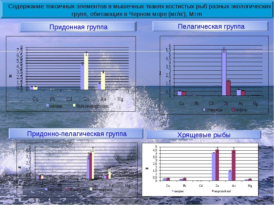 Содержание токсичных элементов в мышечных тканях костистых рыб разных эколог...