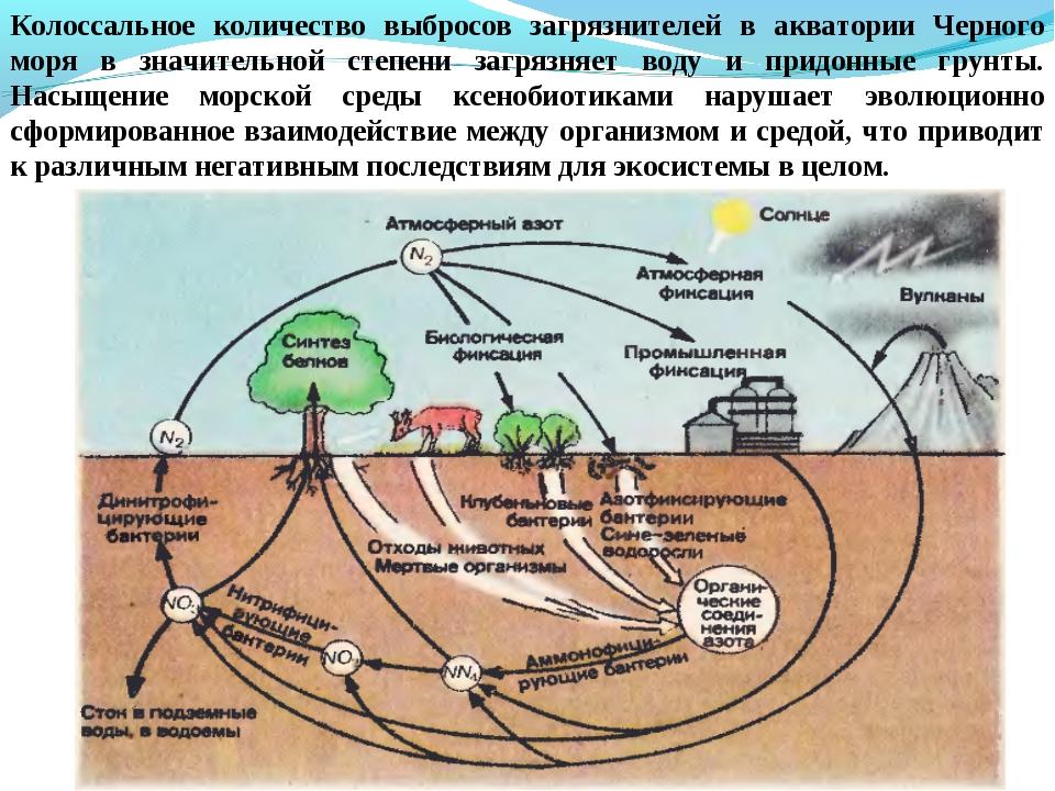 Колоссальное количество выбросов загрязнителей в акватории Черного моря в зна...