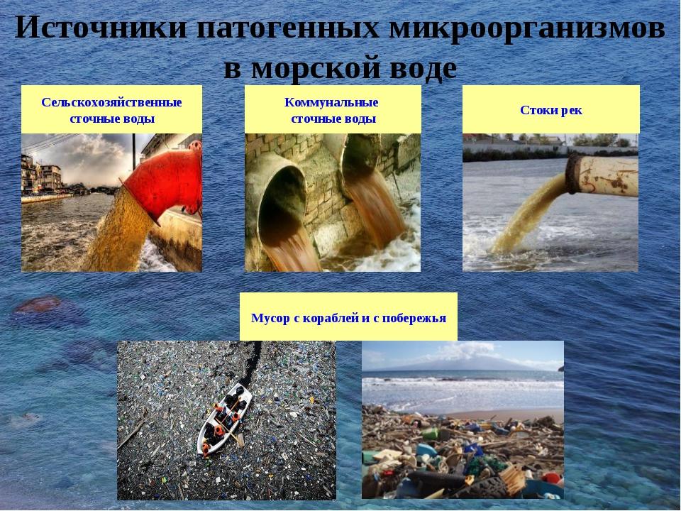 Сельскохозяйственные сточные воды Коммунальные сточные воды Стоки рек Мусор с...