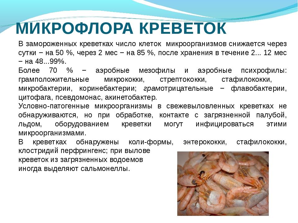 МИКРОФЛОРА КРЕВЕТОК В замороженных креветках число клеток микроорганизмов сни...
