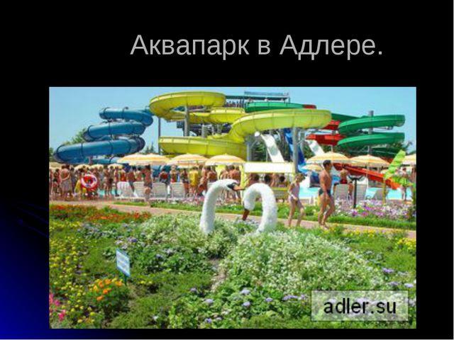 Аквапарк в Адлере.