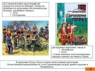 два крупных пороховых завода в: Петербурге Охте, а также комплекс железоплави