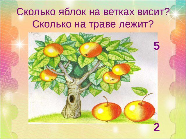 Сколько яблок на ветках висит? Сколько на траве лежит? 5 2