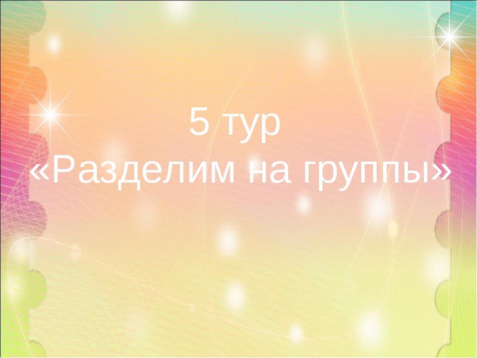 5 тур «Разделим на группы»