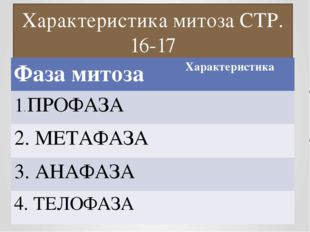 Характеристика митоза СТР. 16-17 Фазамитоза Характеристика 1.ПРОФАЗА 2. МЕТАФ