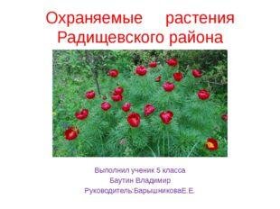 Охраняемые растения Радищевского района Ввввввввввввввввввввввввввввввввввввв
