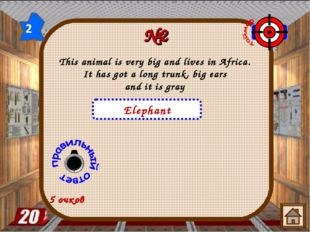 №2 5 очков Elephant This animal is very big and lives in Africa. It has got a