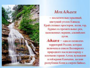 Моя Адыгея – восхитительно красивый, цветущий уголок Кавказа. Край степных пр