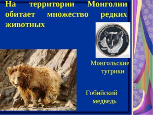 На территории Монголии обитает множество редких животных Гобийский медведь Мо