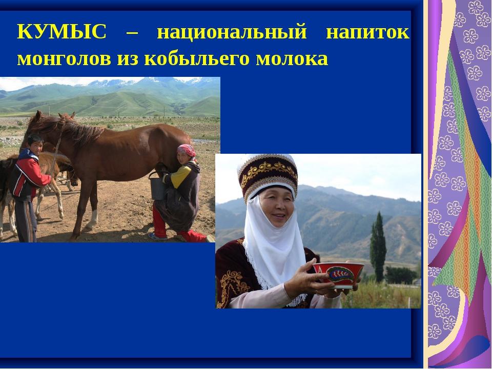 КУМЫС – национальный напиток монголов из кобыльего молока