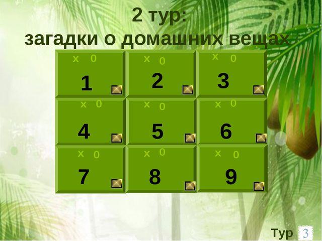 х 0 1 2 3 0 х 9 8 6 5 4 7 х х х х х х х 0 0 0 0 0 0 0 2 тур: загадки о домашн...