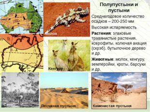 Полупустыни и пустыни Среднегодовое количество осадков – 200-250 мм Высокая и