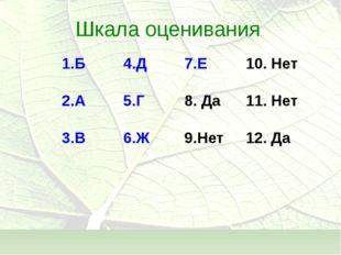 Шкала оценивания 1.Б4.Д7.Е10. Нет 2.А5.Г8. Да11. Нет 3.В6.Ж9.Нет12. Да