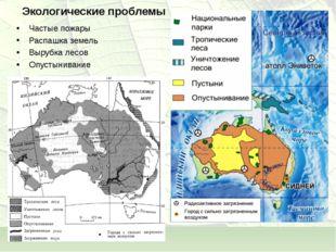 Экологические проблемы Частые пожары Распашка земель Вырубка лесов Опустынива