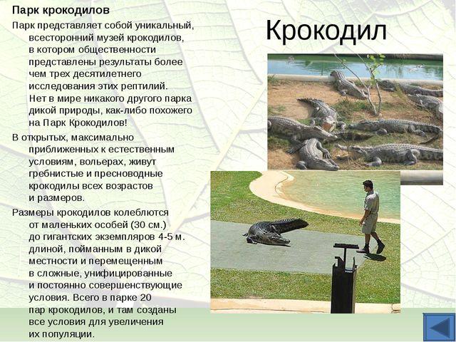 Крокодил Парк крокодилов Парк представляет собой уникальный, всесторонний муз...