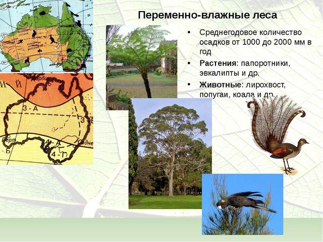 Переменно-влажные леса Среднегодовое количество осадков от 1000 до 2000 мм в...
